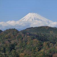 ぐーたらにゃんこの国内旅行記 日帰りバス旅行〜柿田川湧水群