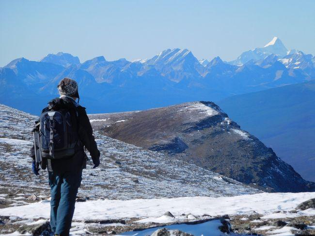 """学生時代の親友が新婚旅行で行ったカナディアンロッキー。<br />その写真を見せてもらってから、いつかは行きたいと思い続けていつのまにか夫婦の年齢を足すと110歳。<br />からだもあちこちガタがでてきたし、今行かなければもうハイキングはできなくなると思い、あこがれの山を歩いてきました。<br />ハイキングコースはすべて秋山裕司氏と石塚体一氏が書かれたガイドブック""""カナディアンロッキーのハイキングガイド""""から選択しました。たいへん懇切丁寧にかかれたガイドブックで、この本がなかったら計画できなかったでしょう。"""