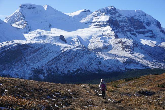 ロッキーハイキングの続きです。<br />旅も中盤にはいり、天気も回復してきました。<br />待ちに待った晴天下のハイキングです。