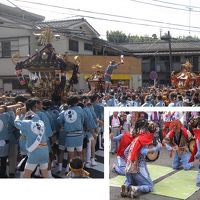 地域のお祭り驚神社(おどろきじんじゃ)例大祭御渡りと横浜市指定無形民俗文化財「牛込獅子舞」