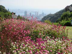 香りに包まれて神戸ひとり旅 3日目 ~南京町で目いっぱい食べて、ハーブ園で癒されて~