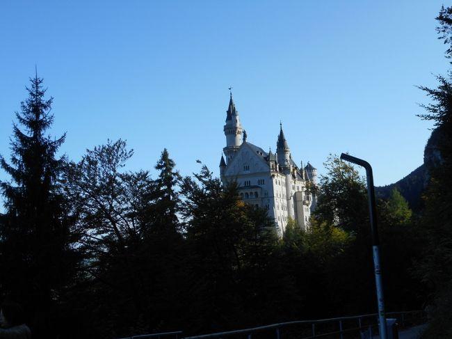 5日目です。<br />ホテルからホーエンシュバンガウ、シャトルバスに乗り換えてノイシュバンシュタイン城へ。<br />ヴィース巡礼教会、ミュンヘンを通り、ニュルンベルクのホテルまで。