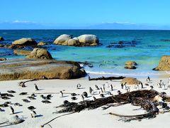 そこは 、ペンギン・パラダイス! 南アフリカ・ケープタウンで一番たくさんペンギンを見た日、からの、ちょこっと香港。