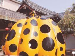 女子3人の日帰り京都旅