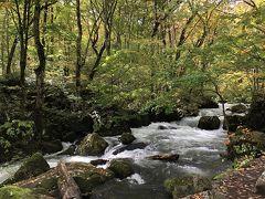 紅葉の始まった奥入瀬渓流 散策 (10月12日)