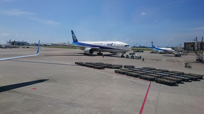 今年はANAのプレミアムポイントが結構たまり、6月で来年度のブロンズサービスが達成できてしまいました。そこで、思い切って一気にプラチナを目指そうと思い、プレミアムポイントを取ることがメインの旅行をしてきました。羽田→那覇→札幌→那覇→羽田、と飛び回った旅行記です。
