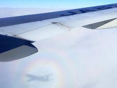 【1】【JAL】どこかにマイルで空の旅1泊2日☆兵庫県:神戸市