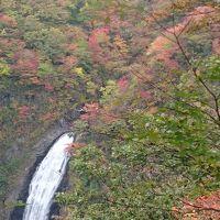 紅葉が見頃(前半)の蔵王 エコーラインをドライブ♪滝見台・御釜・蔵王温泉 ヾ(。>v<。)ノ゛*。