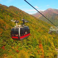 雨続きの中やっと晴れ 谷川岳の紅葉