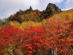 バーニーと行く北海道 3 知床から宗谷岬まで