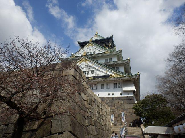 太閤秀吉によって築城された大坂城。大坂冬の陣、夏の陣によって落城。<br />大阪城は誰が造ったのか?大工さん、こんな落語?があったが秀吉の城はすべて破壊され跡形もなくなっている、<br /> 徳川時代に秀吉時代よりはるかに立派な城として再築、しかし第二次世界大戦の大阪大空襲で炎上、その後大阪市民の寄付などで再々築城して現在に至っている。再建されたとは言え豪華な天守閣です。徳川幕府の厳命により各地の藩が競って構築した石垣は指名された藩の威信と幕府への忠誠を示している。<br /> 今回は主として石垣を見て廻ることとした。各地に残る城を多数見てきたがこれほど立派な石垣は大阪城だけと思われる<br /> 行程はゆっくり歩いて2.5時間、城内はほぼ平坦、天守閣はエレベーターで最上階へ上がれます(天守閣は有料)<br />