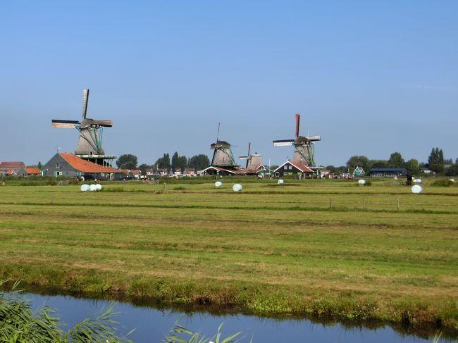 【現地駐在員の夏休み】ベネルクス3国(オランダ、ベルギー、ルクセンブルク)を巡る旅(3日目①:ザーンセ・スカンスでの風車巡り)