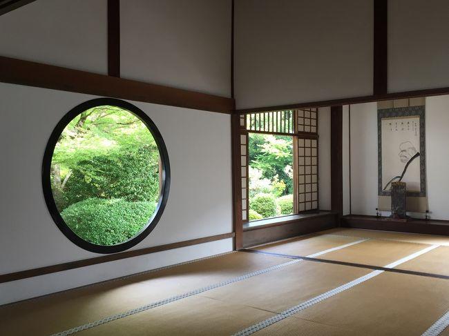 仲秋の京都  親父三人旅 樂美術館~夜の伏見稲荷~悟りの窓へ