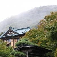 箱根の紅葉はまだまだ先(10月20日)