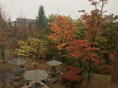 台風接近🌀秋雨の軽井沢