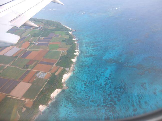 生まれて初めて行く沖縄県は、離島にしました。宮古島。「変わってるねー」と周りに言われたけど、宮古島なら運転できなくてもポタリングで回れそうでしたし、下調べするときに見た島の写真に一目惚れしていました。大晦日に到着し、お正月を島で過ごしました。自宅以外の年越しは(入院した時を除けば)初めてで、それだけでワクワクドキドキでした。そして、また行きたい!と思える島でした。