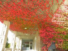 秋のミシガン州 ⑩ クランブルック高校
