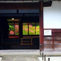 雨の中で秋色に染まり始めた南禅寺境内