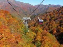 日本の紅葉を巡る旅からー(4)谷川岳ロープウェイ~奈良俣ダム~吹割の滝