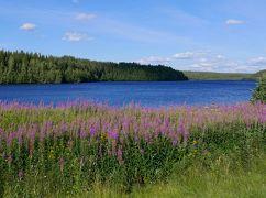 22回目のフィンランド旅行9-4~5日目奥さんの手料理,ラヌア村の美しい川と湖