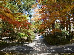 October 2017 奈良・高野山旅行記@2日目 ~高野山&思いがけない紅葉狩り~
