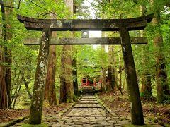 長月 夏から秋へー2  のんびり・まったり日光一人旅をのつもりが・・・ なんやかんやで てんやわんや(´▽`) 中禅寺・二荒山神社中宮詞・菖蒲ヶ浜・滝尾神社