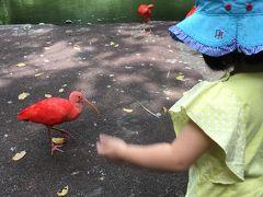 一歳9ヶ月子連れ沖縄旅行⑤⑥