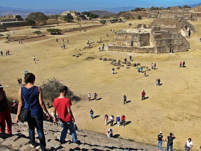 2015年の年末旅はメキシコの遺跡めぐり。<br />この旅ではデカ頭の石像が見つかったオルメカ文明、レリーフの神様が可愛らしいマヤ文明、今も民族の末裔が残るサポテカ文明、絵文字がキュートなミシュテカ文明の地を訪れました。<br /><br />この旅行記の舞台;旅の5日目となるオアハカでは、高台に立つピラミッド群である世界遺産のモンテ・アルバン遺跡を訪れ、紀元前500年頃には始まったサポテカ文明の痕跡を眺め、2000年の時を経た石の声に耳を傾けてきました。<br />そして、夕方のOaxaca町散策では八百屋さんで赤く熟れたトマトを貰って道端で立ち喰いをしたりの街歩きも楽しみました。<br /><br />私はもともとが好奇心の塊で、自分の知らない物事や面白そうな物を見つけるとそちらにフラリと引き寄せられることが多く、オアハカでも私の探究心はアチコチで発動され、色々と楽しかったのですが、この日の私の好奇心はちょっと度が過ぎていたようです。<br /><br />オアハカの街角で私が興味を持ったのは、真赤なドライフルーツの様なモノを山積みにして売っていたおばちゃんのお店。<br />それは、ぱっと見は赤唐辛子を干したものに似ていて、私にはチリ・ペッパーを粉状にする前の物に見えました。<br />私は元来辛い味付けが結構好きで、メキシコ入りしてからも現地の方が使うチリソースを平気な顔をしてサラダなどにかけていたので、粉にする前のチリがあれば買って帰っても良いかな…とも思い、売り子のおばさんに「それは、どの位の辛さなの?」と声をかけました。<br /><br />おばさんは味見用にと商品を一つ爪楊枝に刺し私に差し出し、私もソレを受け取ったのですが、手にして初めて赤いソレが何であるかに気が付きました。<br />爪楊枝の先に串刺しになっていたソイツは、ピリ辛の鷹の爪などではありませんでした。<br /><br />おばさんから爪楊枝を受け取りソイツが何者であるのか気がついた瞬間の私は、きっと目が泳いでいたと思います。<br />それぐらい、手にしたものに衝撃を受けました。<br />でも、受け取ってしまった以上、味見をしない訳にはいきません。<br />こんな時に発揮するのが大和撫子魂。<br />此処で引き下がったら、日本女子の名が廃ります。<br /><br />おばさんから貰ったソレが何であったのか。<br />ソレの写真を旅行記の表紙にしようかとも思いましたが、あまりにインパクトがありすぎてボツにしました。<br /><br />本旅行記の後半にその写真を入れてありますので、この先を読まれる場合は、写真に気を付けて。<br />ソレが夢に出てきたとしても、自己責任でお願い致します。<br /><br />☆★☆★☆旅程 2015/12/25-2016/1/2☆★☆★☆<br />□12/25 成田-バンクーバー-メキシコ・シティ <br />□12/26 ビジャエルモサ、ラベンタ遺跡、パレンケ <br />□12/27 ヤシュチラン遺跡、ボナンパック遺跡 <br />□12/28 パレンケ遺跡、ミソル・ハ、アグア・アスル <br />■12/29 オアハカ モンテアルバン遺跡<br />□12/30 ミトラ遺跡、エルトゥーレ、イエルベ・エル・アグア<br />□12/31 メキシコ・シティ、フリーダ・カーロ博物館、国立人類学博物館<br />□1/1  メキシコ・シティ-バンクーバー-<br />□1/2  -成田<br /><br />☆★☆★☆続・母さんの一人旅 メキシコ編☆★☆★☆<br />・デカ頭に会いに・ラベンタ遺跡 http://4travel.jp/travelogue/11091613<br />・暗闇のラビリンス http://4travel.jp/travelogue/11124868<br />・宇宙人が作った古代都市 http://4travel.jp/travelogue/11202484<br />・お母さんは、にわか解説員 https://4travel.jp/travelogue/11294321<br />・ジャングルで水遊び♪ https://4travel.jp/travelogue/11296494<br />・オアハカの洗礼 https://4travel.jp/travelogue/11297815<br />・時を止めた岩Hierve el Agua http://4travel.jp/travelogue/11311212<br />・フリーダ・カーロの世界 https://4travel.jp/travelogue/11314204<br /><br />☆★☆★2011年