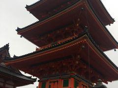 母・子・孫の親子3代 京都旅行 Vol.1
