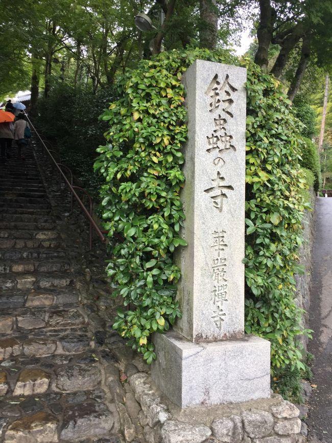 <br /><br />死ぬ前に一度でいいから京都に行きたい!というおかん。<br /><br />毎年「よし、じゃ連れていく!」と言うと「飛行機が怖いから・・・」と伸ばし伸ばし。<br /><br />でも年々歳を取ってきて飛行機での旅は今年を逃したらいけないかもしれない!と強硬。<br />おかん、80を前にして初飛行機となりました。<br /><br />旅費・お土産・食事とすべて私持ちの親孝行旅行です!<br /><br /><br />マナティとおかんを連れての親子3代旅です。<br /><br />あまり詰め込みすぎずゆっくりと回ります。<br /><br />なのに大型の台風が日本に近づいてきて初日は雨!!<br />台風が夜の間に去った2日目。<br /><br />おかんは一日バスツアー<br />私とマナティは別行動で・・・<br /><br />私が行きたかった「鈴虫寺」へレッツゴー!<br /><br /><br />2018年<br /> 10月22日 新潟―大阪―京都<br />★10月23日 京都<br /> 10月24日 京都―大阪―新潟<br /><br />宿泊ホテル アパホテル京都駅堀川通<br />
