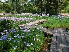 2017年6月 フェリー2泊3日の旅 その1 フェリーと万博記念公園の菖蒲・蓮・睡蓮