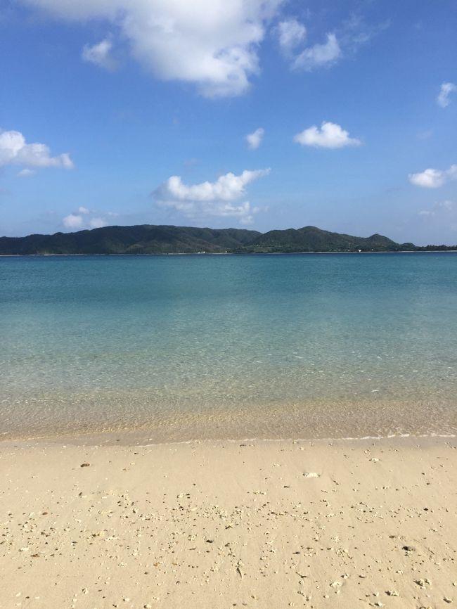 『バニラエアで行くふらり奄美大島一人旅(1)』奄 …