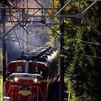 東武鉄道創立120周年記念「SL大樹」を追いかけて(だけど・・・ガッカリ編)