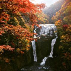 秋色☆朝さんぽ/渋滞知らずの紅葉ハイキング【日本三大名瀑:袋田の滝】
