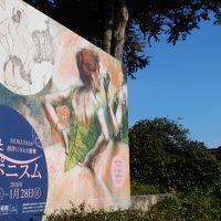 2017年11月上京:美術館巡りとランチの旅。
