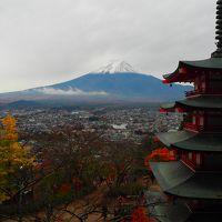 富士山を望む新倉山浅間公園の紅葉と河口湖もみじ回廊