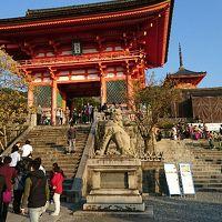 1泊2日の秋の京都旅行(京都市内と宇治市)