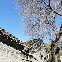 中国北京漫々悠々の記 ① ~  遥かな悠久の大地を歩く