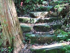 熊野古道-2 滝尻王子 中辺路を歩き始め ☆苔付き石段の坂を上って