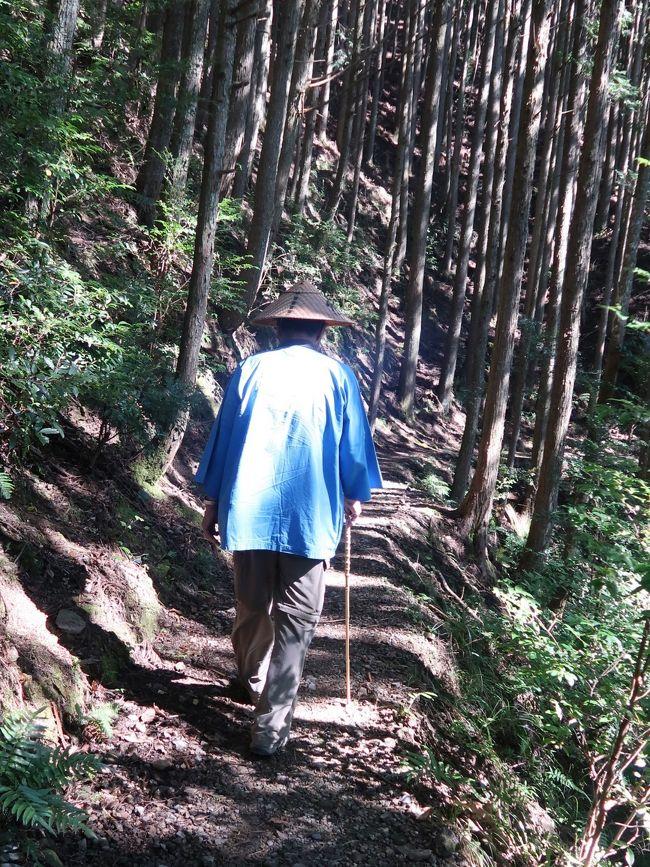 箸折峠(はしおりとうげ)の牛馬童子は、熊野古道の中辺路(和歌山県田辺市中辺路町近露)にある石像。田辺市指定史跡(1971年7月26日指定)。<br />場所は中辺路、箸折峠近くにある。高さ50cm程度の小さな石像。文字通り、牛と馬の2頭の背中の上に跨った像である。一説には、延喜22年(922年)に熊野行幸を行った花山法皇の旅姿を模して明治時代に作られたとされる。この石像のある箸折峠の由来は、花山法皇が食事のため休憩をした時に、近くの萱を折って箸代わりにしたからといわれている。<br />(フリー百科事典『ウィキペディア(Wikipedia)』より引用)<br /><br />中辺路とは、和歌山県南部の道路で熊野街道紀伊路の一部。<br />田辺市から海岸に沿う大辺路と分れ、紀伊山地を越えて熊野三山へ通じる参詣路で、本宮までは国道 311号線にほぼ相当する。古くから熊野街道の本通りとされ、沿道には王子社がまつられ、紀州藩の伝馬所もおかれていた。<br />(http://d.hatena.ne.jp/keyword/%C3%E6%CA%D5%CF%A9 より引用)<br /><br />中辺路ウォークコース<br />世界遺産に登録されている熊野古道の中でも人気なのが、『中辺路(口熊野・田辺~熊野本宮大社)』のウォークコース。熊野古道のゴールデンルートとも呼ばれる、もっとも人気のコースです。<br />熊野古道・中辺路 については・・<br />http://www.tb-kumano.jp/kodowalk/<br />http://www.hongu.jp/kumanokodo/<br />http://www.hongu.jp/kumanokodo/walk/<br /><br />高野山・熊野三山・中辺路をゆくハイキング3日間<br />その昔、熊野三山詣でを行う人々が通る道を、豊かな自然の中、旅人に思いをはせながら歩きましょう。世界遺産・熊野古道のみどころを3日間かけてじっくりと語り部同行で歩きます <br />■熊野古道 <br />紀伊半島南部にあたる熊野の地と伊勢や大阪・和歌山、高野及び吉野とを結ぶ古い街道の総称で、「熊野街道」とも呼ばれています。 <br />■中辺路 <br />田辺と熊野本宮大社を結び、かつて上皇や女院が参詣路とし、後鳥羽上皇が歌会を催したとされる近露王子をはじめ、王子と呼ばれる神祠が数多く現存する道です杉林に囲まれた神聖な雰囲気の山道が続きます<br /><br />2 紀州みなべ温泉--★滝尻王子--熊野古道・中辺路ハイキング(道の駅--牛馬童子像--近露王子--発心門王子--水呑王子--★熊野本宮大社--大斎原)--串本温泉・串本ロイヤルホテル(泊)  <br />※歩行:約9km、約4時間