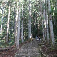 鳳来寺山で登山。1
