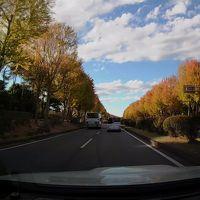 愛車の車窓から〜ぶらりドライブ つくば編〜