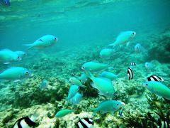 サイパン島(北部)_Saipan (North area)  海中洞窟「グロット」!透明度の高いラグーンでシュノーケリング