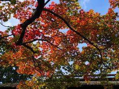 西国街道から京都嵐山とグルメ・カフェ少々の旅(二日目)~嵯峨御所とも呼ばれた大覚寺で南北朝時代にまで思いを馳せた後は嵯峨野のプチ紅葉狩り。後半のイクスカフェ嵐山本店とうめぞのはちょっと余計。イカリヤ食堂への流れがチグハグでした~