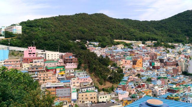 ソウルばっかりでしたが、初の釜山へ一人たび!<br />海雲台、チャガルチ、西面、南浦ぐるぐるめぐりました。<br />ソウルと同様、電車と徒歩でどうにかなりタクシーは使いませんでした。<br />はじめてだったので、釜山パスツアー(いわゆるはとバスみないの)でまわったら楽チンでした。<br />ソイングクの森@蔚山にいきたくて、釜山からKTXとバスでいってきました。<br />とーっても良いお天気で公園内の散歩には最高でした。<br />ハングルがまったくできないけど、蔚山の方々、とっても優しかったです。<br />Thanks!!<br /><br />&lt;AIR><br />往路:NRT10:35→BSN JAL957 ビジネス<br />復路:BSN14:05→NRT JAL958 ビジネス <br />