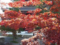 紅葉の京都 駆け足ひとり旅