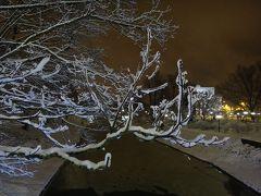はじめてのバルト三国2017-<10>リーガ2日目後半・夜の散歩は雪景色の運河から
