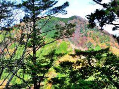 大鈴山(1012m) 奥三河の山