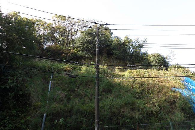 昨年から円応寺隣の崖が青いビニールシートで覆われるようになって、その崖がかつての巨福呂坂切通の跡であることに気が付いた。巨福呂坂切通は、鶴岡八幡宮の横から青梅聖天社の脇を通り、庚申塚・道祖神塚から横須賀市水道トンネル(旧海軍水道トンネル)を越えると消えてしまっている(https://4travel.jp/travelogue/10452541)。そのために、巨福呂坂洞門ができて、巨福呂坂切通が消滅してしまったものと思われがちであった。しかし、現実には巨福呂坂洞門手前の円応寺隣の崖に巨福呂坂切通の跡が残っているのである。<br /> 円応寺の裏山や禅居院の裏山の尾根には、かつての巨福呂坂切通と亀ヶ谷坂切通とのバイパス道が通っていた。今でも一部は掘割の道の跡が残っている。このバイパス道の下の山の中腹に掘削して切通が通っていたのだ。あるいは、この切通から円応寺の裏山を巡ってバイパス道とも繋がっていたとも考えられる。巨福呂坂切通は現在の巨福呂坂洞門を横切らずに円応寺山門前に下り、建長寺惣門前辺りに通じていたのだ。道路脇には円応寺の山門に上る坂道が並行してあるが、円応寺の山門前辺りからこの坂のような感じで建長寺惣門前辺りに下りていたのだ。しかし、今は道路で掘削されてしまっている。また、この道路の坂道は円応寺の山門に上がる階段を数mほど過ぎた巨福呂坂洞門寄りでピークとなっている。現在の道路は下って行く同じ工程を巨福呂坂切通では上って巨福呂坂洞門脇の峠に至っていたのである。この峠から庚申塚・道祖神塚まではバイパス道と道路との間の中腹の平地に巨福呂坂切通の街道があったとする説もあるが、この峠とバイパス道が繋がっていて然るべきであろう。確かめたい事項である。<br />(表紙写真は巨福呂坂切通跡)<br />