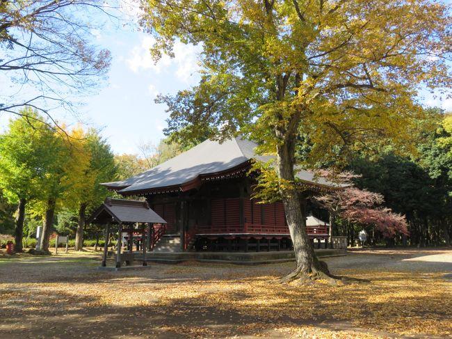 11月16日、午前10時40分過ぎにサイクリングで自宅から5キロの所にある多福寺、木ノ宮地蔵堂、多聞院、神明社へ紅葉を見るために行った。 午前11時半過ぎに多福寺より、多聞院へ行く途中にある木ノ宮地蔵堂を訪問した。銀杏の黄葉と建物の色との対比が美しい風景をなしている。<br /><br />〇木ノ宮地蔵堂について・・・説明文による<br />古くから信仰を集めてきた上富にある木ノ宮地蔵堂。その縁起は、坂上田村麻呂と結びつけて伝えられていますが、真相については明らかではありません。江戸時代まで何度かの荒廃や焼失などの記録があり、現在の堂は、安永6年(1777)に再建されたものです。その本堂内には木造の地蔵菩薩が安置され、天井には107枚の植物画が描かれています。<br /><br />*写真は木の宮地蔵堂